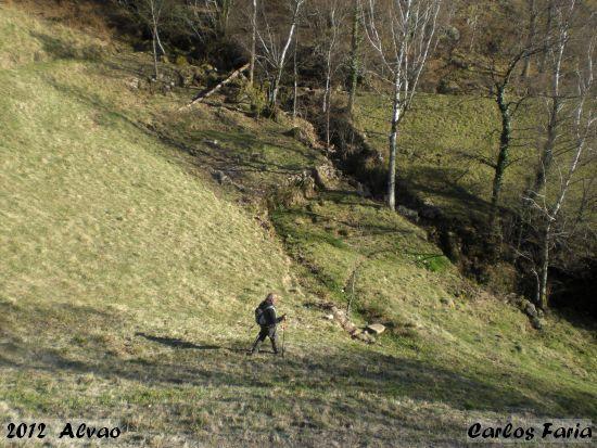 2012-03-11-alvao-carlos_faria_1