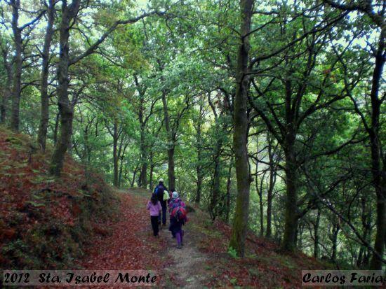 2012-04-07-sta_isabel_monte-carlos_faria_3