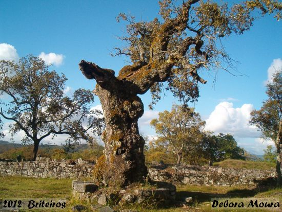 2012-05-26-briteiros_-_debora_moura_2