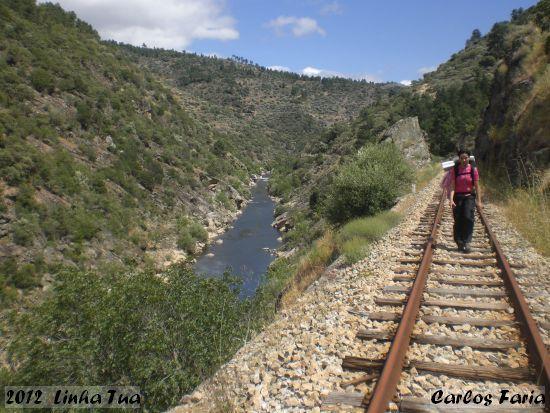 2012-06-09-linha_tua_-_carlos_faria_3