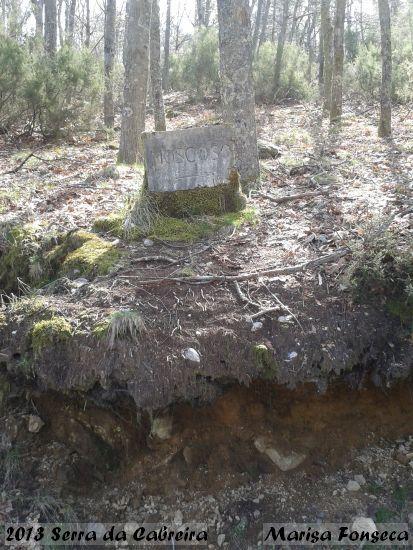 2013.04.21-SerraCabreira-MarisaFonseca_2