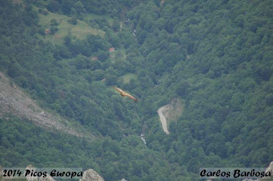2014.06.07-PicosEuropa-CarlosBarbosa_2