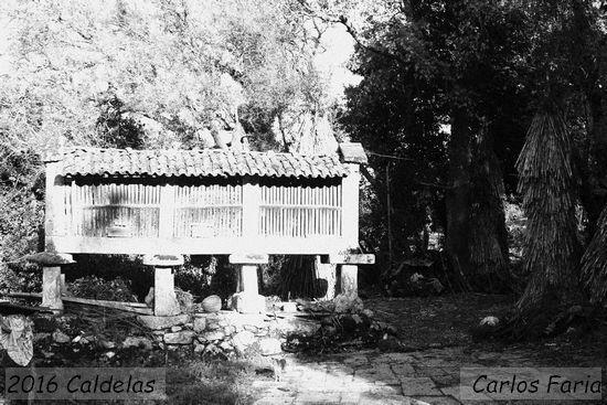 2016.01.24-Caldelas-CarlosFaria_1