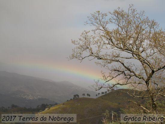2017.03.12-TerrasDaNobrega-MariaGraçaRibeiro_3