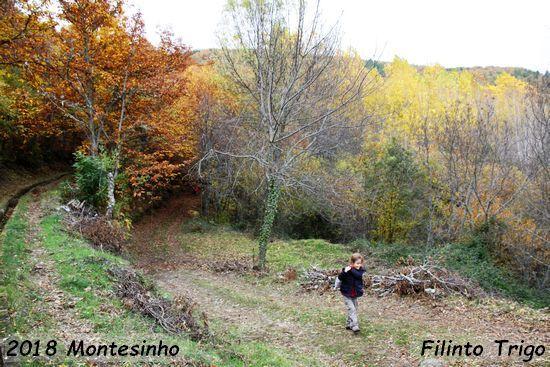 2018.11.17-Montesinho-FilintoTrigo_3