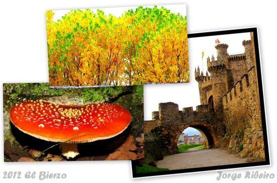 2012.11.01-El Bierzo - Jorge Ribeiro - colagem
