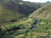 2012-06-09-linha_tua_-_carlos_faria_1