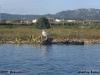 2012-09-16-cavado_-_carlos_faria_2
