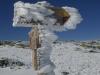 2012-12-01-s-estrela_-_carlos_faria_3