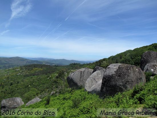 2016.06.19-CornoDoBico-MariaGraçaRibeiro_1